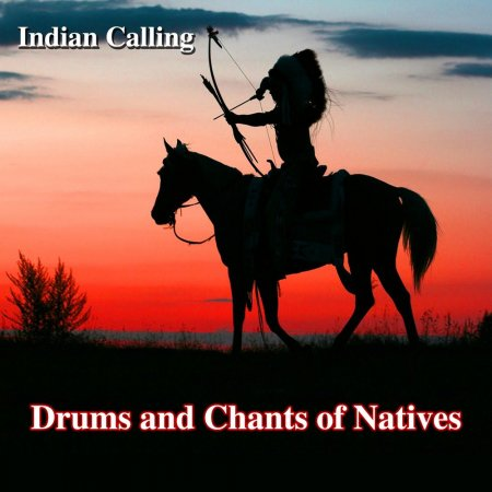 TCO - Wolf's Song (Native American Music) (2015)